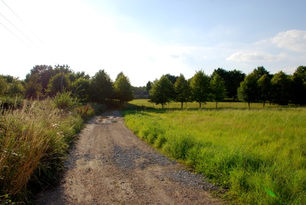 Over the meadow, down the gravel road to get to the hostel